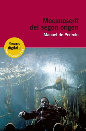 MECANOSCRIT DEL SEGON ORIGEN +RECURS DIGITAL