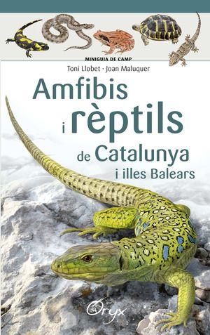 AMFIBIS I RÈPTILS DE CATALUNYA
