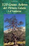 120 GRANS ARBRES DEL PIRINEU CAT I ANDORRA